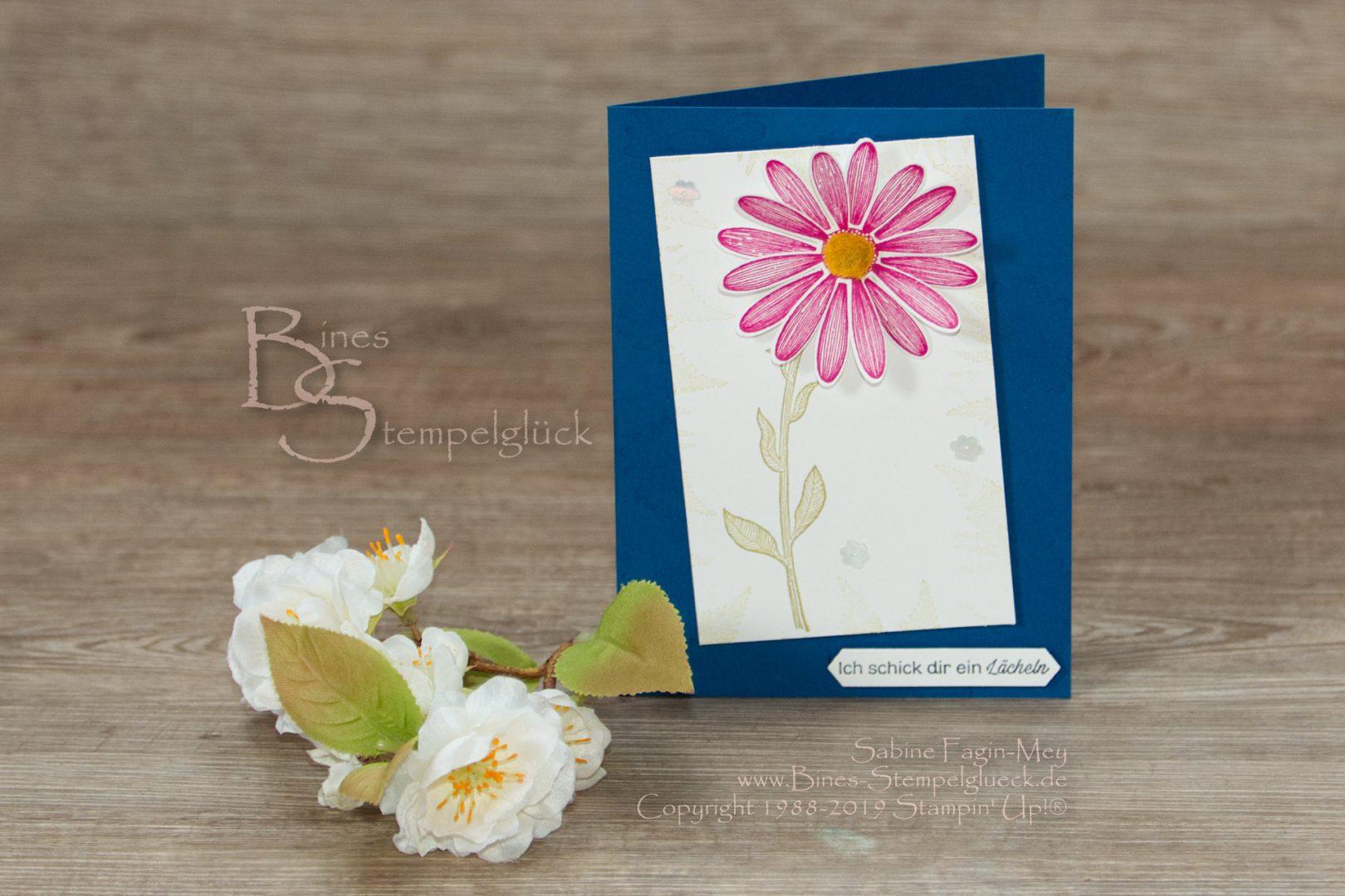 Grußkarte Gänseblümchenglück