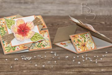 Dutch Door Fold Card mit Stampin' Up! Produkten