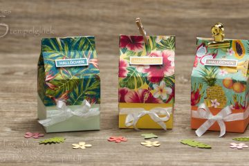 Mini Milchkarton mit Deckel mit Stampin' Up!
